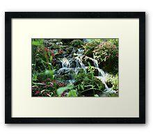 Rainbow Springs Framed Print