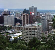 Panoramic view of Montreal by chrisfx