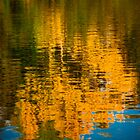 Autumns Reflections by CJTill