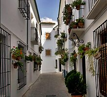 Whitewashed houses in Priego de Cordoba by Sue Clamp