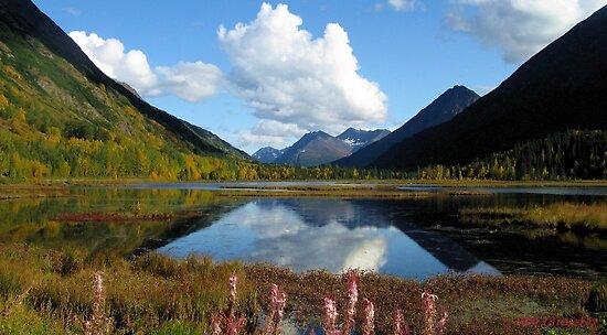 ALASKA'S KENAI DOUBLE BEAUTY by 1arcticfox