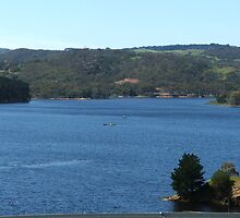Myponga Reservoir (upper side 2) by ScenerybyDesign