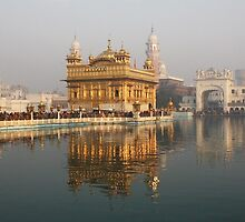 Golden Temple, Amritsar, Punjab, India by RIYAZ POCKETWALA