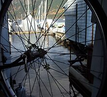 Bicycle view Cowichan Bay by Celticrow