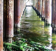 Under the pier 1 by Paul Todd
