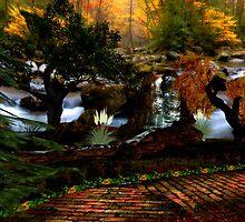 Autumn by Dennis Plaggenborg