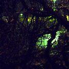 November Night by HELUA