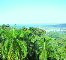 Jamaican View by SylviaS