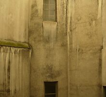 Urban Decay by foxandhound