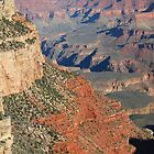 Paint it Red - Grand Canyon by Barbara Burkhardt