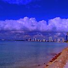 Key Biscayne Beach by ZSUZSA LADO