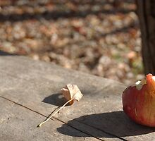 Apple Shadow - Conner Prairie by Artophobe