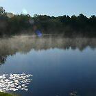 Misty Morning by Dennymon