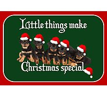 Little Things Make Christmas Special Rottweiler Greetings Photographic Print