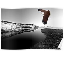 """Kite Flying at Mara Creek"" Poster"