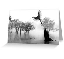 """ Spoonbill Landing"" Greeting Card"