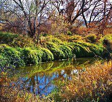 Irrigation Ditch by trueblvr