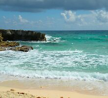 Caribbean Waters by Rosalie Scanlon