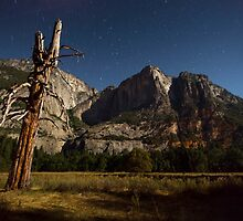 Yosemite Stars by Michael Treloar