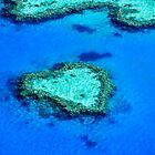 Heart Reef, Whitsundays by Nadean Brennan