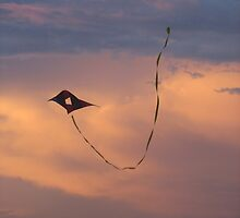 the kite runner in hollywood beach, florida by farhee