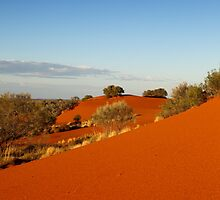 Red dune landscape of central Australia by idphotography