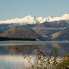 Snow capped freshness on Queen Charlotte Drive , New Zealand by jenuine