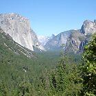 Beautiful Gorge by maxrandall