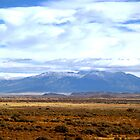 San Luis Valley Co. by Paul Albert