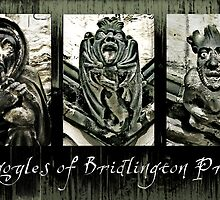 Gargoyles of Bridlington Priory  by yvonne willemsen
