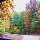 autumn  rear vew  by ANNABEL   S. ALENTON