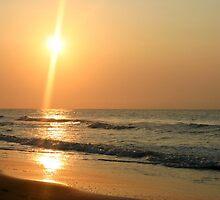 Myrtle Beach, South Carolina by Alyce Taylor