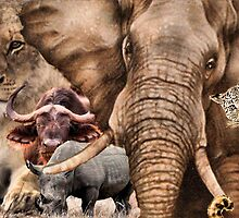 "A COLLAGE OF AFRICA'S ""BIG 5"" -  by Magaret Meintjes"