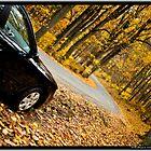 A Drive through Shenandoah by vishphotography