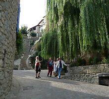 The Village of Duilhac-sous-Peyrepertuse by HELUA