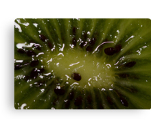 Kiwi The Fruit Canvas Print