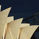 Sydney Opera House with Harbour Bridge backdrop by Sheila  Smart