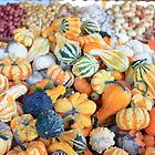 Fall Gourds by rnrphoto98