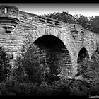 Duck Brook Bridge by Lyana Votey