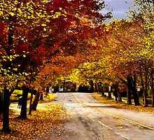 Листья Желтые by LudaNayvelt
