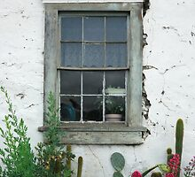 Window, San Juan Bautista by Cathy P. Austin