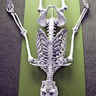 Sivasana - 'The Corpse' Pose by BonesBob