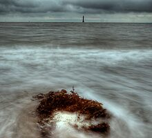 Haulbowline Lighthouse by De-aRt