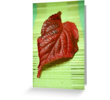 Blaze of colour Greeting Card