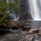 MacKenzie Falls by Travis Easton