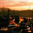 Early Evening Harbour by TREVOR34