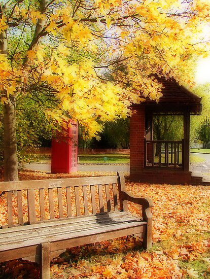 The Village Green  by Colin J Williams Photography