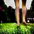 Don't wake the fairies by Charlie Trotman