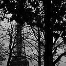 Le Parisien - 2 by Ninit K