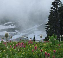Wild Flowers by Sinchen